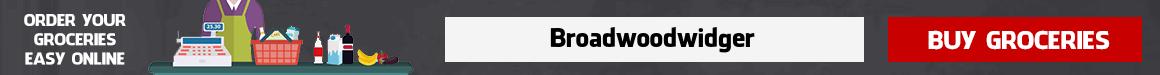 Grocery Delivery Broadwoodwidger